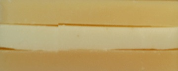 Winter Soap Sampler